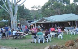 Bush Shack Brewery - Pubs and Clubs