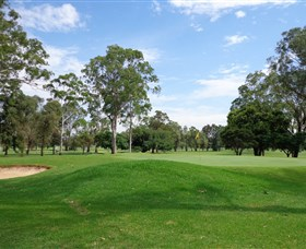 Singleton Golf Club - Pubs and Clubs