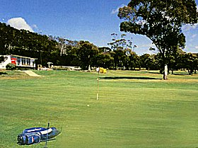 Bicheno Golf Club Incorporated - Pubs and Clubs