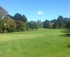Bowral Golf Club - Pubs and Clubs