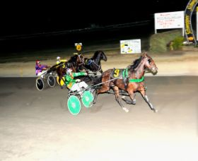Bathurst Harness Racing Club - Pubs and Clubs