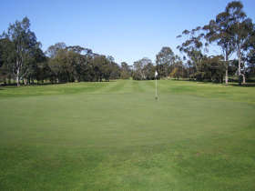 Maffra Golf Club - Pubs and Clubs