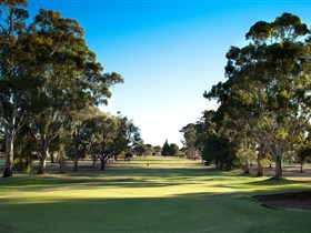Loxton Golf Club - Pubs and Clubs