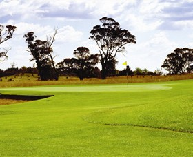 Mt Broughton Golf and Country Club - Pubs and Clubs