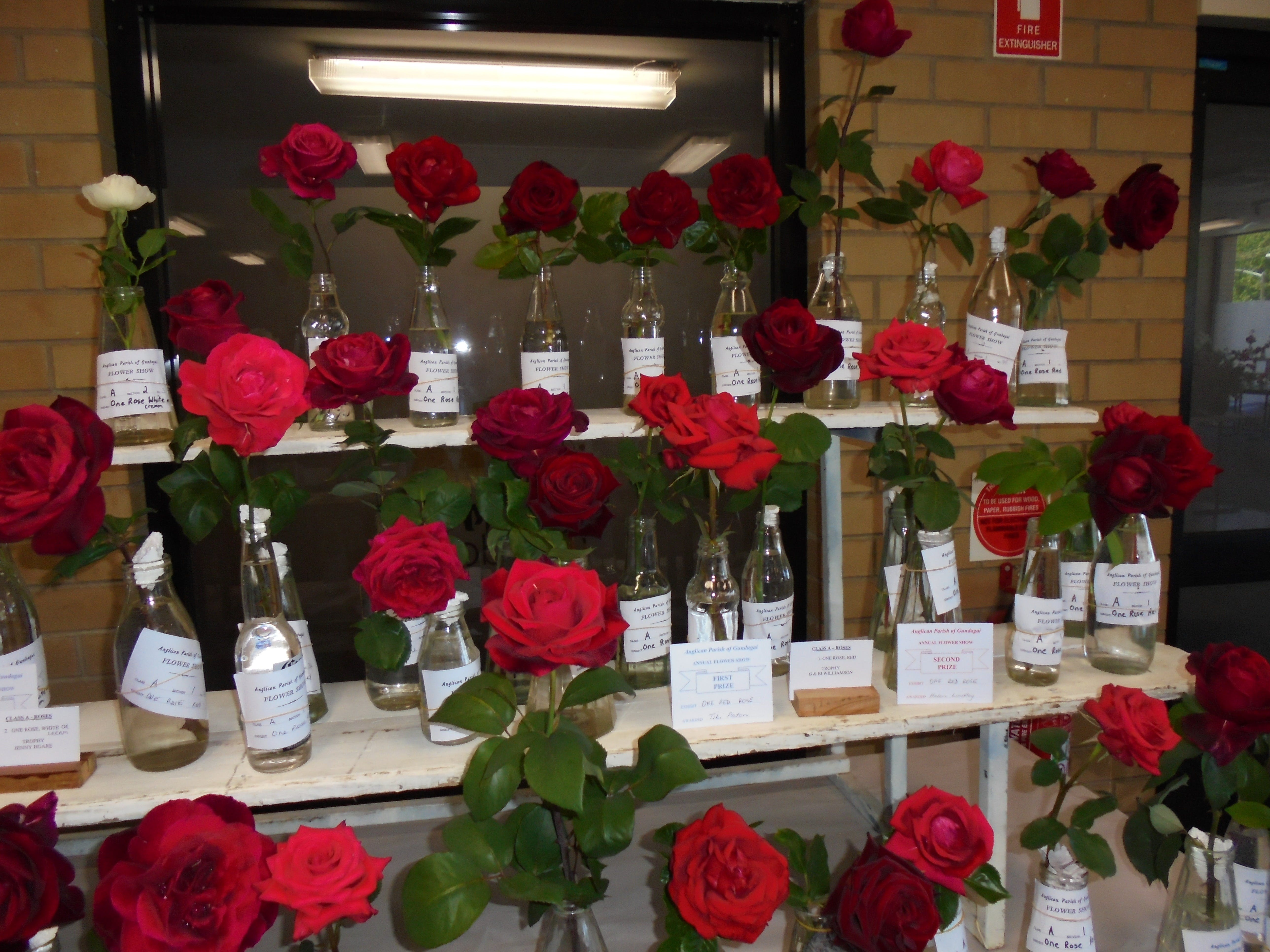 Anglican Spring Flower Show Gundagai - Pubs and Clubs