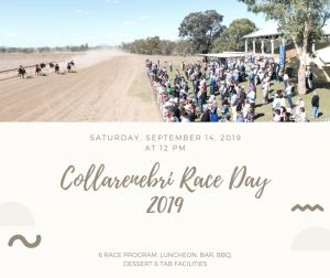 Collarenebri Races - Pubs and Clubs