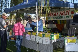 Corowa Rotary Federation Festival Market - Pubs and Clubs