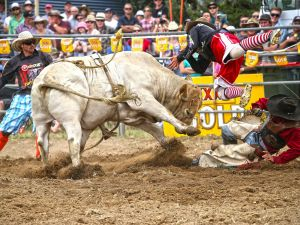 Jindabyne's Man From Snowy River Rodeo - Pubs and Clubs