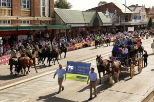 Scone Horse Festival - Pubs and Clubs