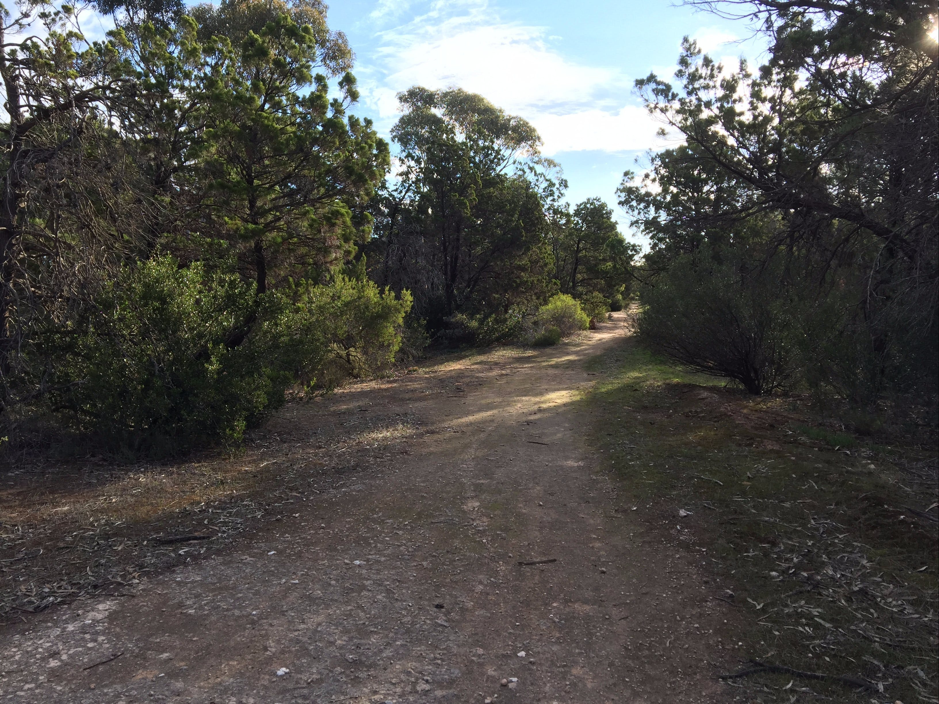 Victoria Park Moonta monthly walks - Pubs and Clubs