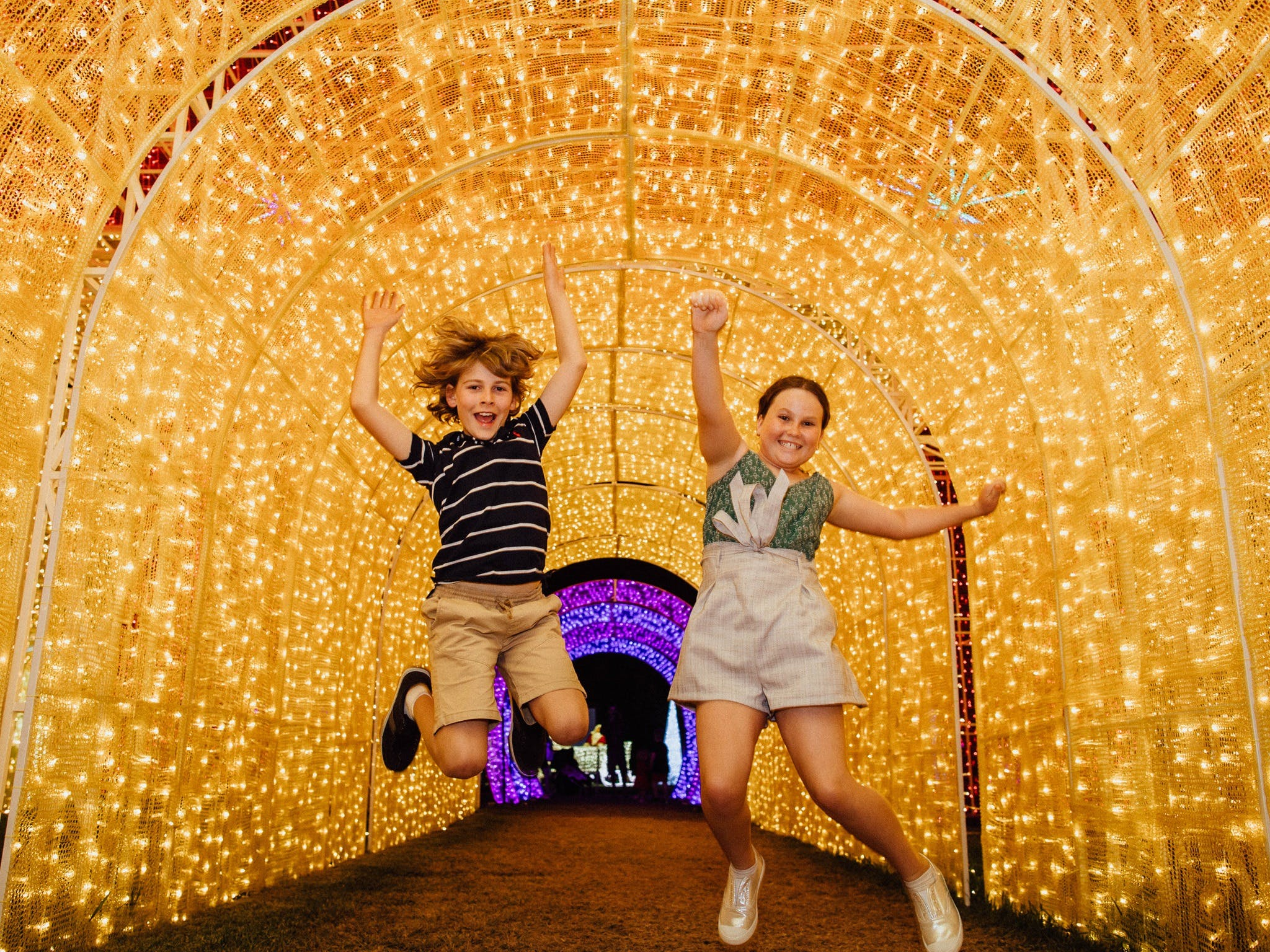 Christmas Lights Spectacular New Year's Eve at Hunter Valley Gardens - Pubs and Clubs