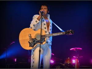 Elvis Forever - Damian Mullin 'Up Close and Personal' - Pubs and Clubs