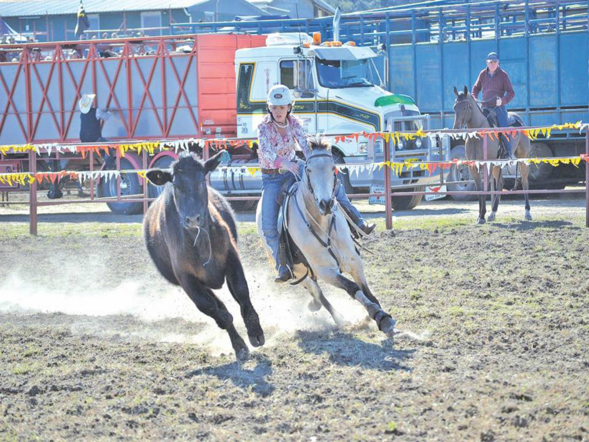Gresford  Campdraft and Rodeo - Pubs and Clubs