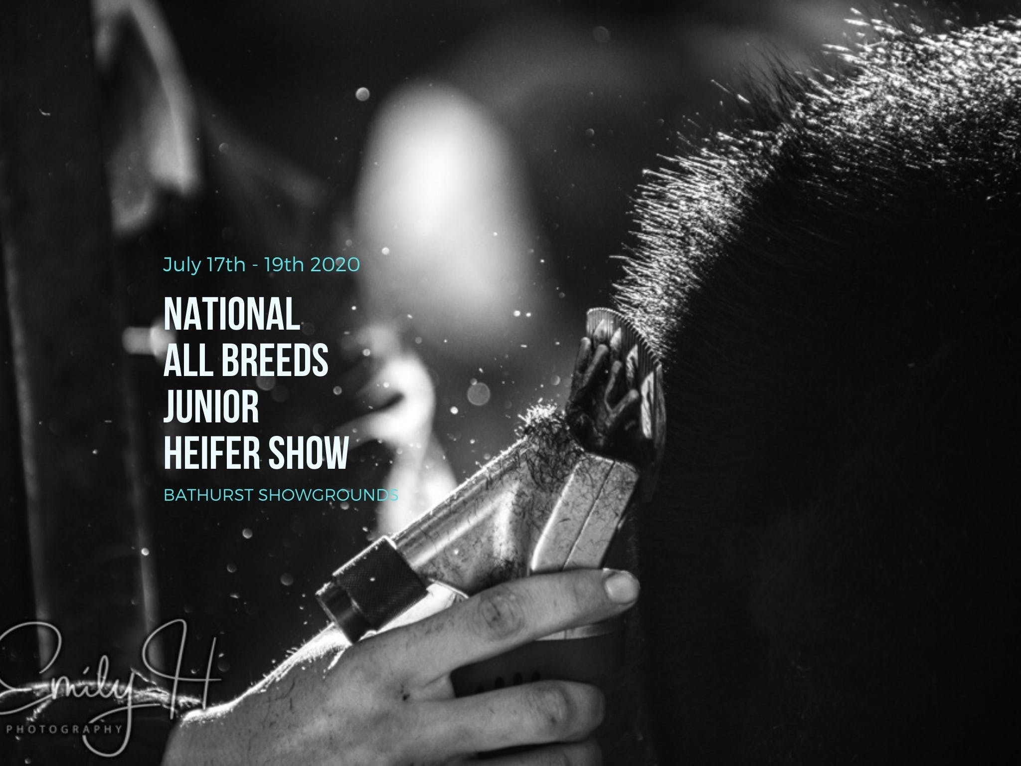 National All Breeds Junior Heifer Show - Pubs and Clubs