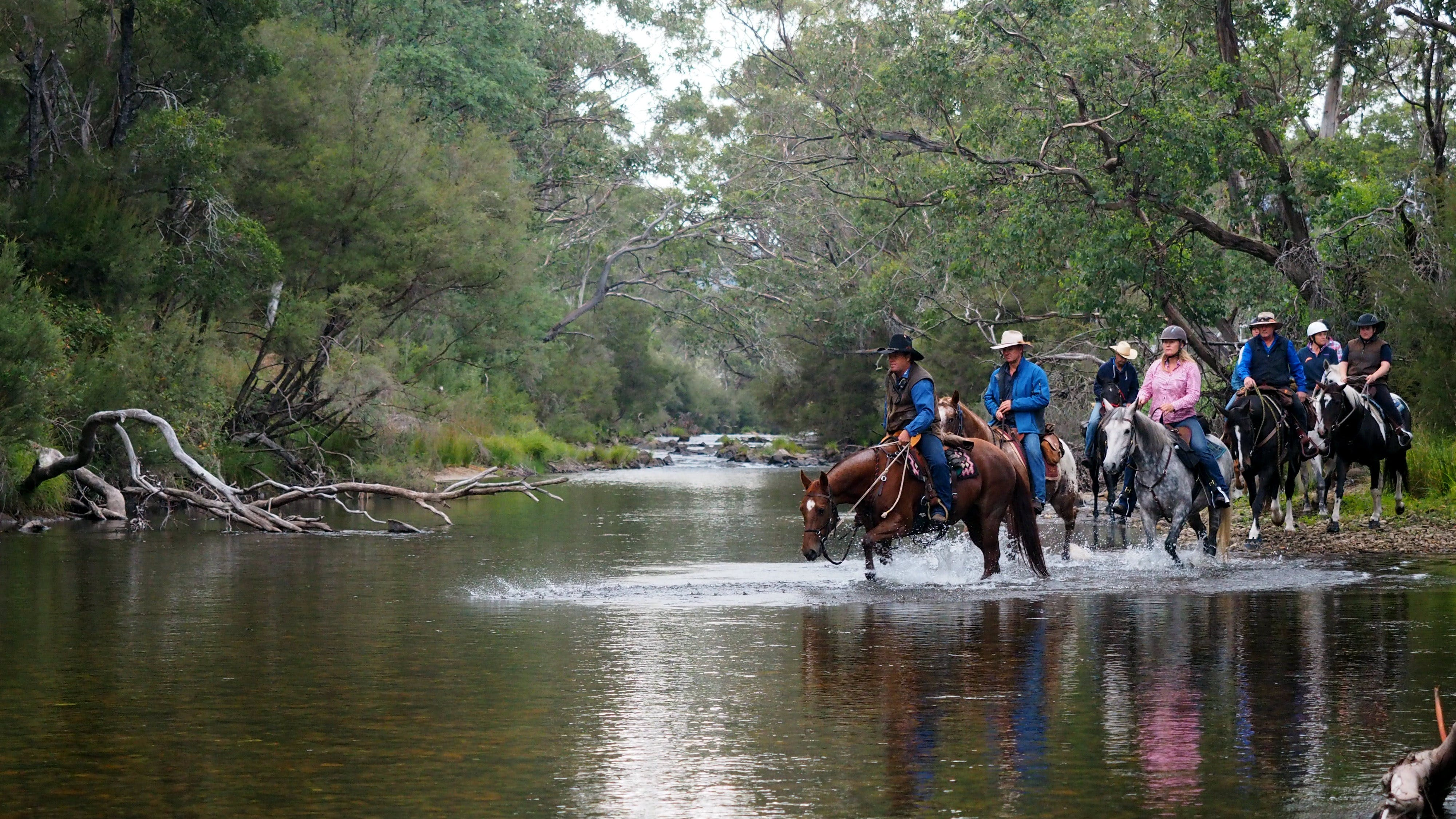 The Man From Snowy River Bush Festival - Pubs and Clubs