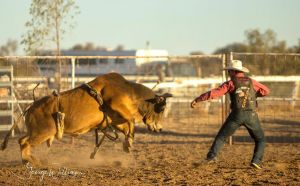 Walgett Charity Bushman's Carnival Rodeo and Campdraft - Pubs and Clubs