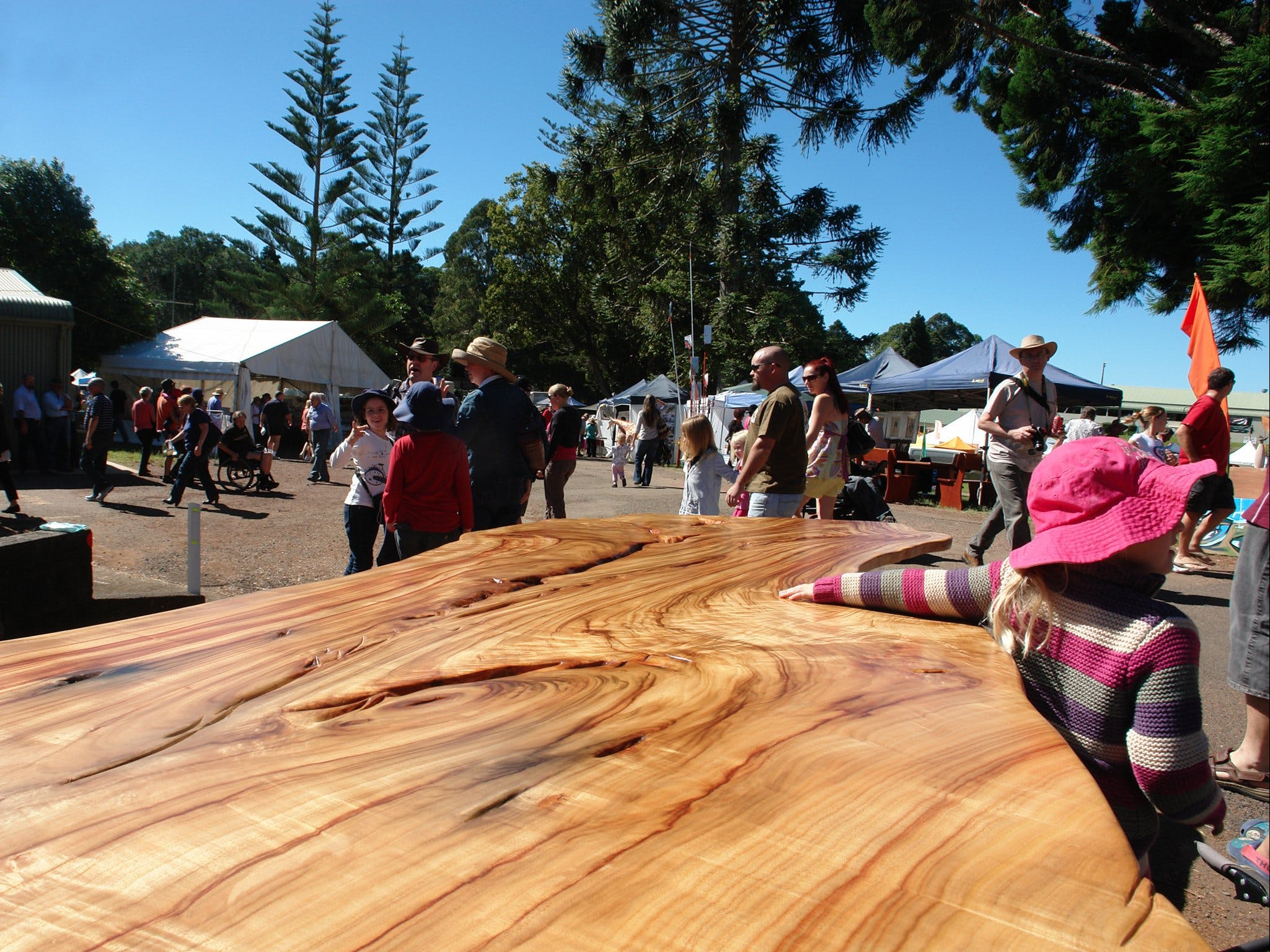 Maleny Wood Expo From Seed to Fine Furniture - Pubs and Clubs