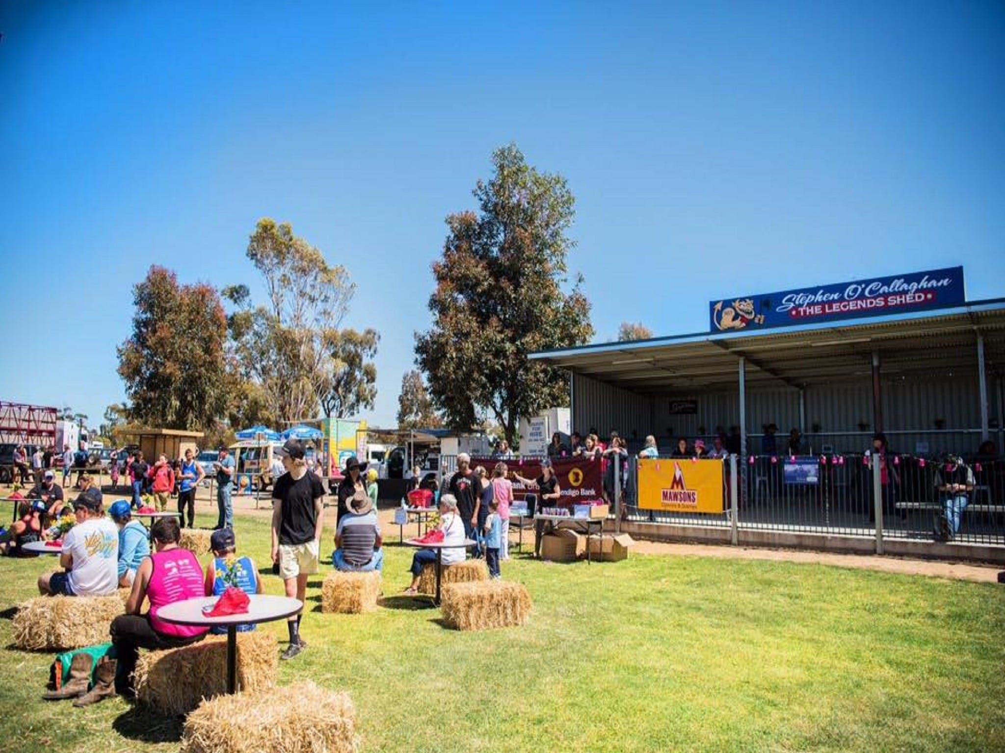 Mathoura Speed Shear and Annual Cancer Fundraiser - Pubs and Clubs