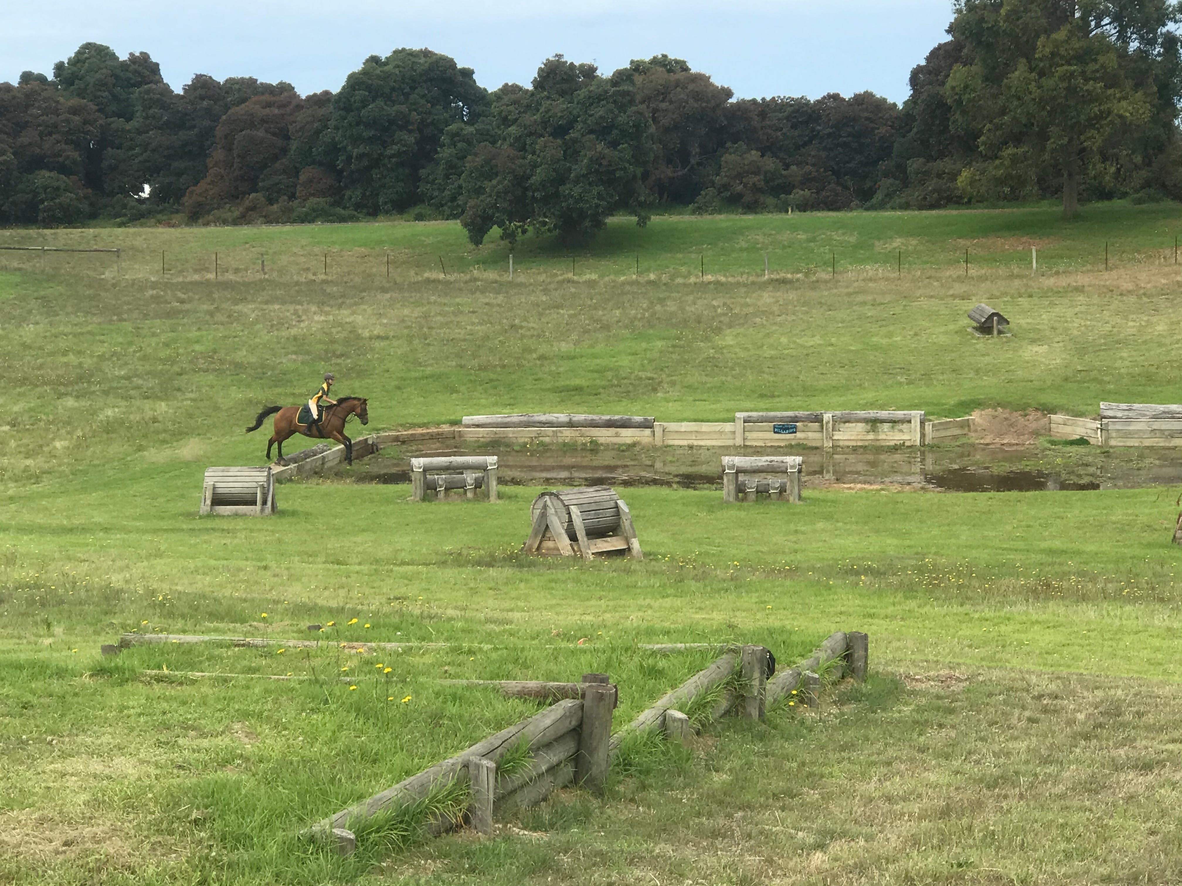 Mount Gambier and District Pony Club Horse Trials 2020 - Pubs and Clubs