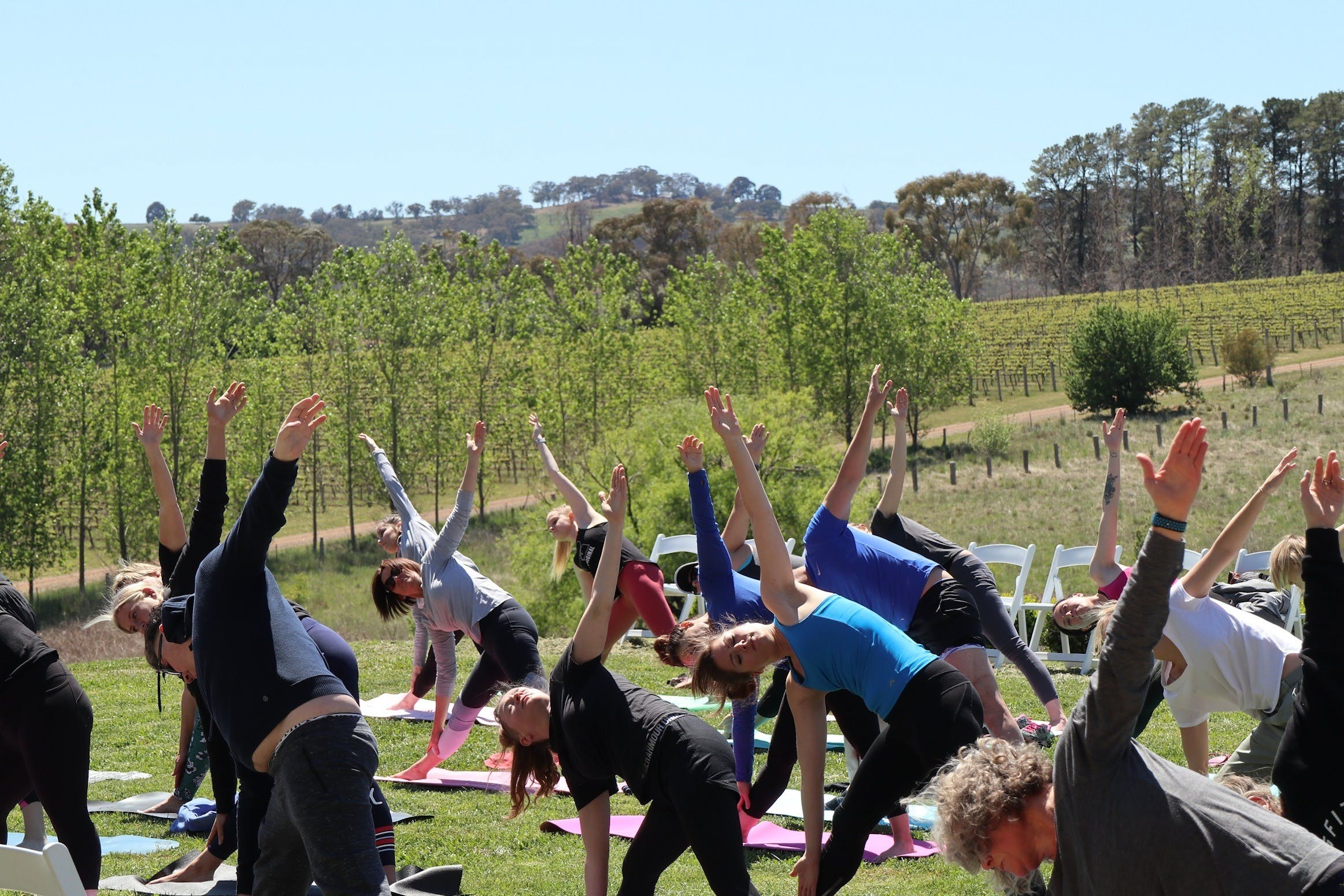 Yoga in the Vines - Pubs and Clubs