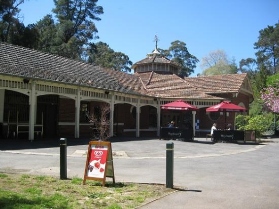 Hepburn Pavilion Cafe - Pubs and Clubs