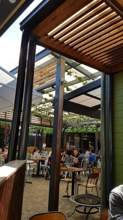 The Shed Cafe - Hurstville - Pubs and Clubs