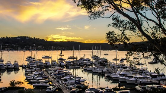 Salt Cove on Pittwater - Pubs and Clubs