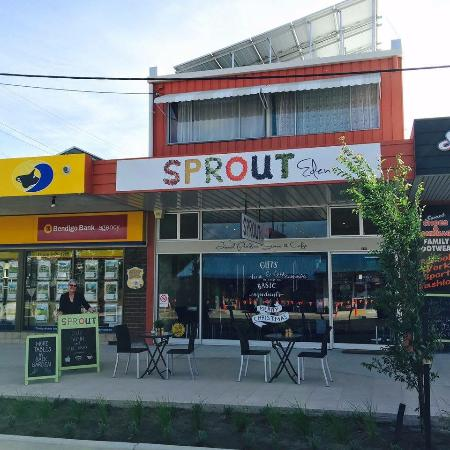 Sprout Eden - Pubs and Clubs
