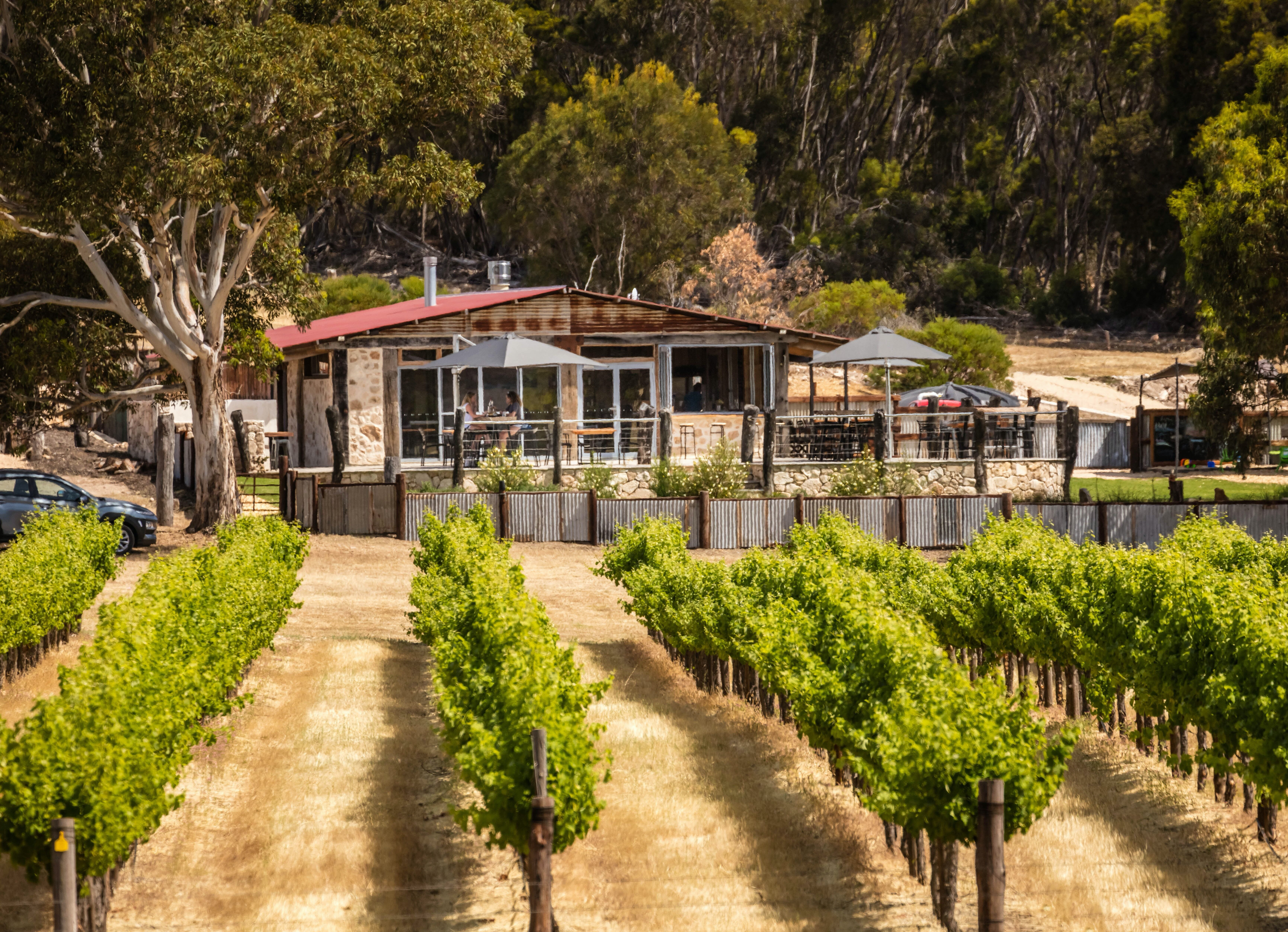 False Cape Wines Cellar Door - Pubs and Clubs