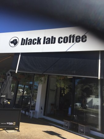 Black Lab Coffee - Pubs and Clubs