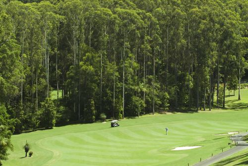 Bonville Golf Resort - Pubs and Clubs