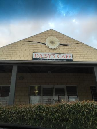 Daisy's Cafe - Pubs and Clubs